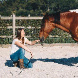 Paarden lezen