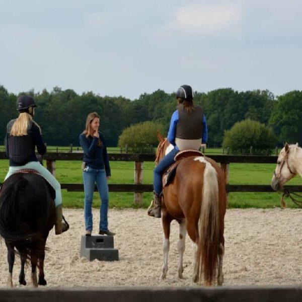 horsemanship for kids