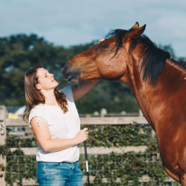 Leervakantie horsemanship