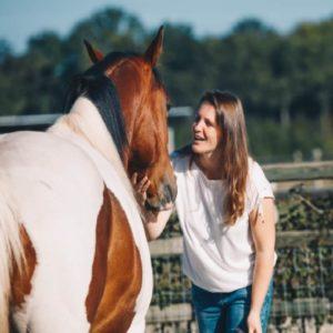 Leervakantie natural horsemanship