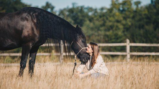 Women, wine & horsewisdom
