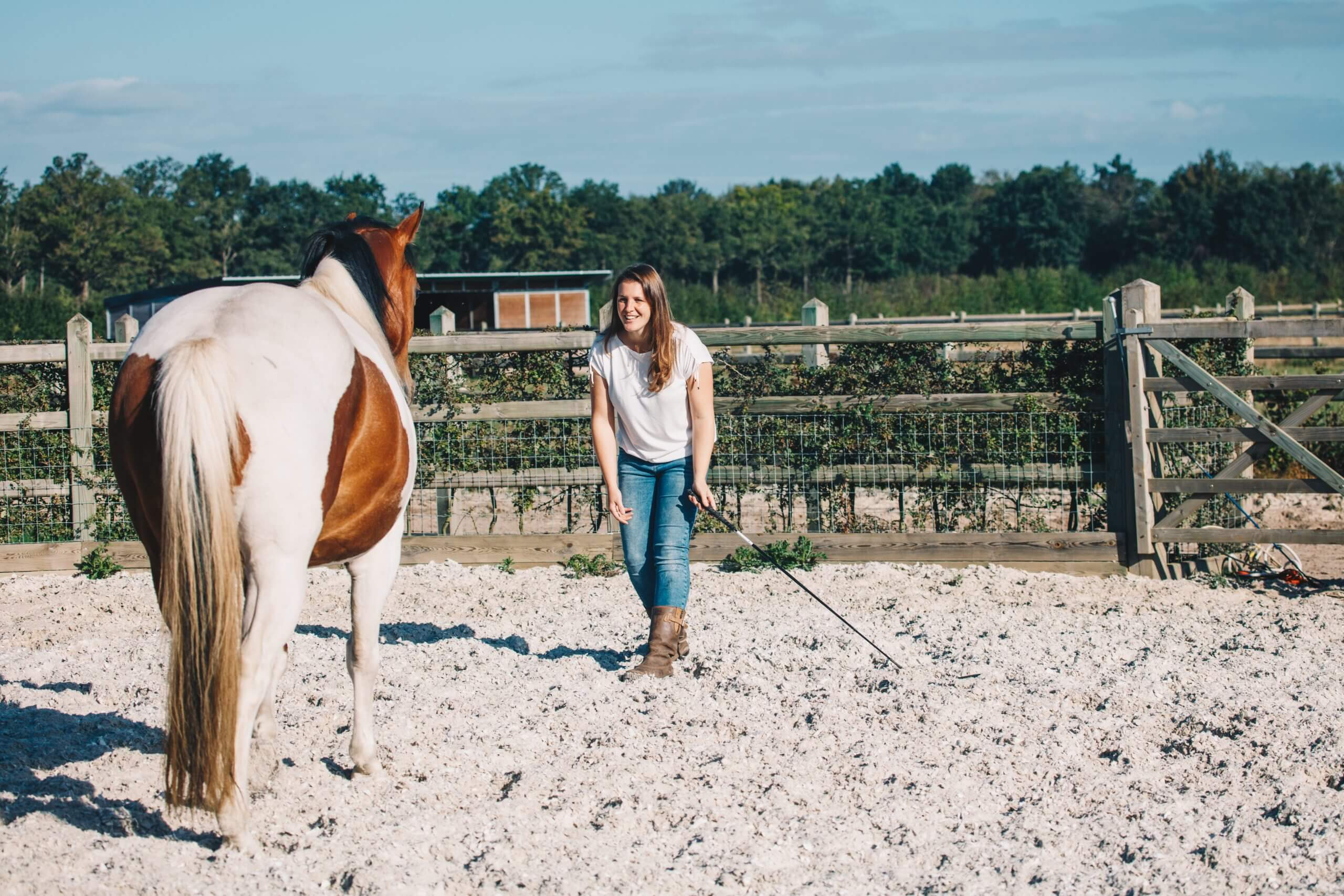 Joke Spaas - Coaching Horsemanship