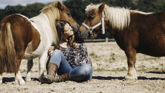 Natural horsemanship - webshop